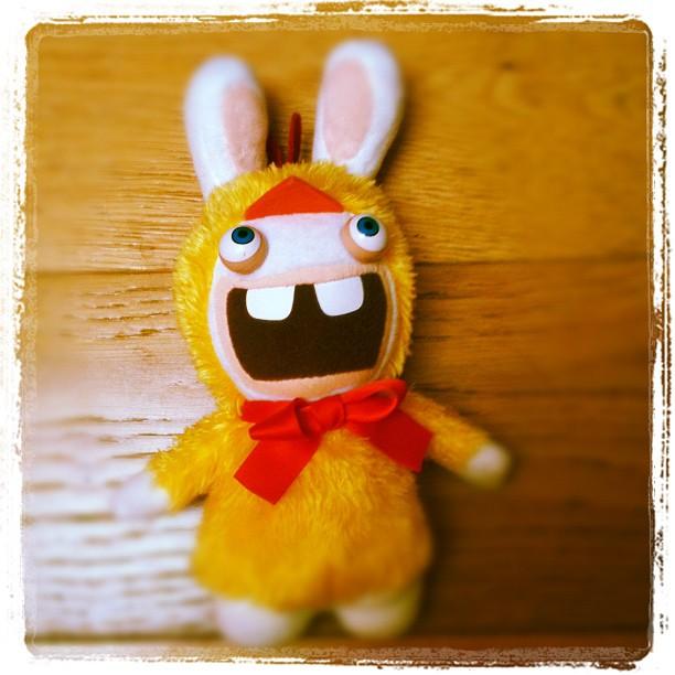 Les peluches lapins cretins le monde des lapins tout sur les lapins esp ce litt rature - 4 images 1 mot poussin lapin ...