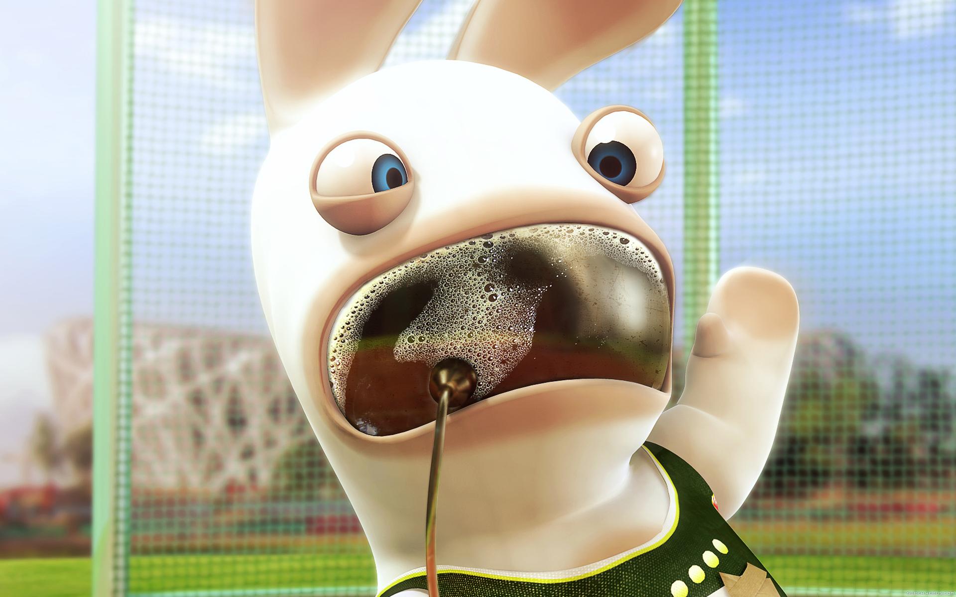 Fond D Écran Marrant fonds d'écran | le monde des lapins - tout sur les lapins : espèce