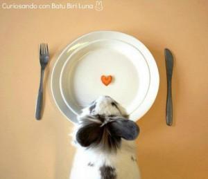 Lapin attablé avec un tranche de carotte en forme de coeur dans l'assiette = Curiosando con Batu Biri Luna