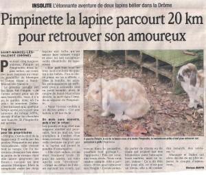 Pimpinette la lapine parcourt 20 km pour retrouver son amoureux