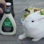 ken's et ses lapins méchants