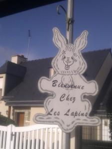 Bienvenu chez les lapins à Lamballe
