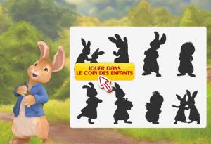 jeu dombre pierre lapin france 5