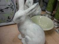 Statuts de lapins pour Jardin - ©www.le-monde-des-lapins.fr