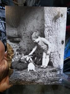 Enfant donnant à manger aux lapins (vers 1935) de ©Tony Burnand Roger Viollet - ©www.le-monde-des-lapins.fr