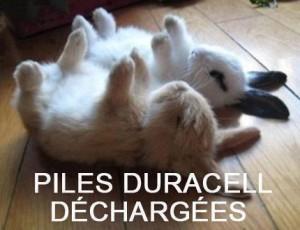 piles duracell dechargees