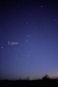 Constellation Lepus - Lièvre - Till Credner