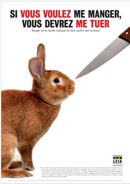 affiche L214 lapins