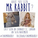 Where is Mister rabbit ?